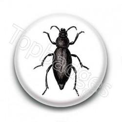 Badge Insecte