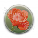Badge Rose Orange