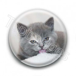 Badge Chat Gris
