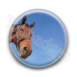 Badge Tête de Cheval