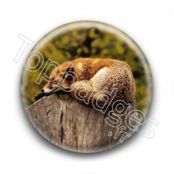 Badge : Renard endormi