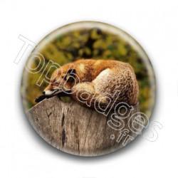 Badge : Renard endormi