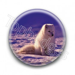 Badge : Renard des neiges