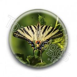 Badge Papillon