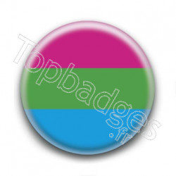 Badge Drapeau Polisexual Pride