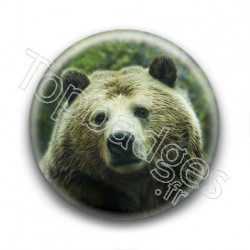 Badge : Ours brun