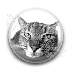 Badge Chat Gros Plan