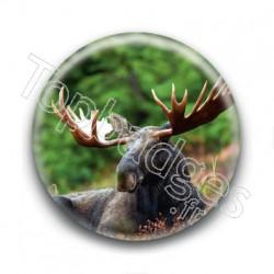Badge Elan
