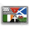 Pins chromé drapeau Interceltique