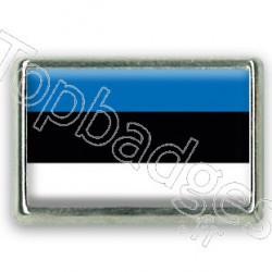 Pins rectangle : Drapeau Estonie