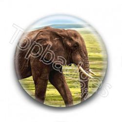 Badge : Eléphant