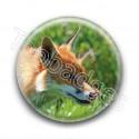 Badge : Renard
