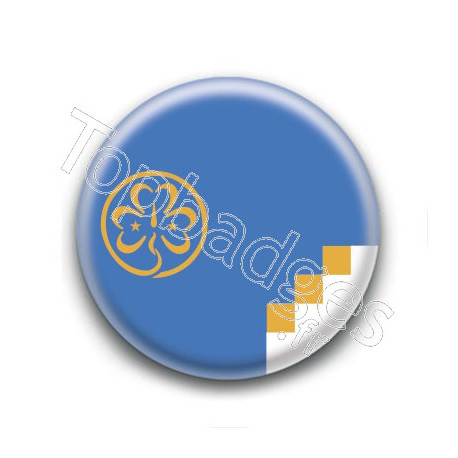 Badge : Drapeau Scout