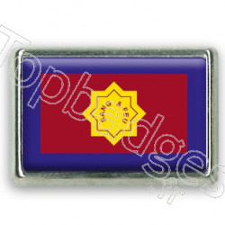 Pins rectangle : Drapeau armée du salut
