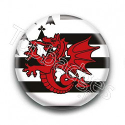 Badge Drapeau Dragon Rouge Breton